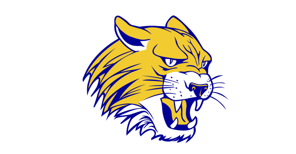 St Paul Wildcats Logo
